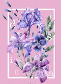 Botanic Pink Card With Iris Flowers, Leaves. Spring Ornament Concept. Floral Poster, Invite. Layout  poster