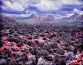 pic of impressionist  - Impressionist style image of Sedona Arizona as a painting - JPG