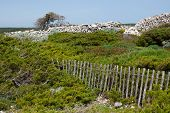 image of old stone fence  - the scenic view with two old fences  - JPG