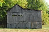 picture of tobacco barn  - Tobacco barn in the farmland surrounded by trees - JPG