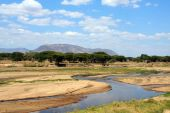 Ruaha river in african savanna