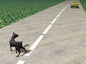 stock photo of leaving  - One car running and leaving behind an abandoned dog in the street - JPG