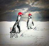 stock photo of iceberg  - Funny picture of two penguins as a ice fishermen floating on iceberg - JPG