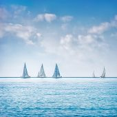 picture of yachts  - Sailing boat yacht or sailboat group regatta race on sea or ocean water - JPG