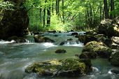 pic of mystical  - Mystic river landscape in a forest with small waterfalls - JPG