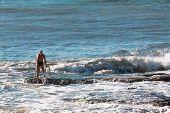 picture of swimming  - Senior man with swim cap prepares to swim in rough sea waves  - JPG