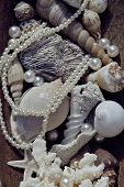 picture of beach shell art  - a lot of sea shells and perls in art mess close up - JPG