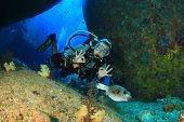 pic of cave woman  - Woman scuba diver exploring underwater cavern and puffer fish - JPG