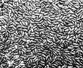 stock photo of grayscale  - Kidney beans background on grayscale - JPG