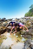 Постер, плакат: Двое маленьких детей ищет маленьких существ в rockpool на берегу моря
