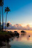 pic of tropical island  - Beautiful early morning sunrise over a tropical island - JPG