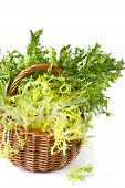 stock photo of escarole  - Curly escarole endive leaves on a wicker basket - JPG