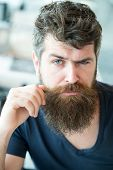 Macho Brutal Bearded Hipster Flirting Close Up. Hipster Brutal Guy Twisting Mustache. Man Confident  poster