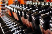 Rows Of Dumbbells In The Gym With Hign Contrast In The Gym poster
