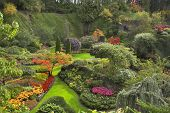 image of garden eden  -  Phenomenally beautiful and picturesque garden for walks and supervision over flowers and trees - JPG
