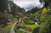 foto of garden eden  -  Phenomenally beautiful landscape in well - JPG