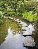 stock photo of stepping stones  -  A footpath from stones laid with brick through a fine pond in Japanese garden - JPG