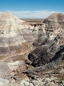 picture of paleozoic  - Blue Mesa - JPG