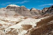 foto of paleozoic  - Blue Mesa - JPG