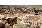 pic of paleozoic  - desert badlands - JPG