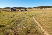 picture of colorado high country  - Hornbeck Farmstead buildings on the plains - JPG