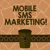 Conceptual Hand Writing Showing Mobile Sms Marketing. Business Photo Text Campaign That Interact Wit poster