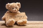 Homeless Hungry Child Concept. Teddy Bear Sad, Holding A Cardboard Sign, Text Hungry poster