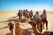Tourists On Camels