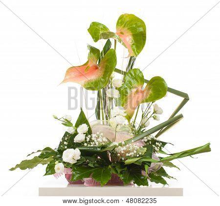 Basket Of Anthurium Essencia