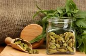 Jar of green cardamom with rocket on canvas background close-up