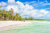 Idyllic tropical beach with turquoise water and trees near the water at Cayo Coco (Coco key) in Cuba