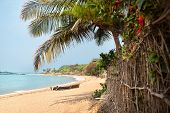 stock photo of karnataka  - Tropical Om beach and coconut palm trees near the blue ocean in Gokarna Karnataka India - JPG