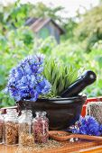 pic of hyssop  - mortar with blue cornflowers and sage on windowsill herbal medicine - JPG