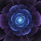 foto of fractals  - blue and black transparent 3d fractal abstract flower - JPG