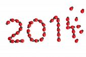 picture of ladybug  - numbers for the new year 2014 build of ladybugs - JPG