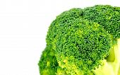 pic of cruciferous  - Closeup of organic green broccoli floret with white copyspace - JPG