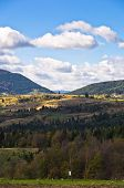 picture of serbia  - Radocelo mountain landscape at autumn sunny day - JPG
