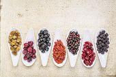 image of elderberry  - healthy dried berry collection  - JPG