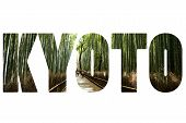 picture of bamboo forest  - Word KYOTO over natural - JPG