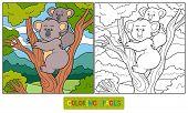 foto of koalas  - Game for children - JPG