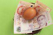 stock photo of bird egg  - Singaporean dollars and an egg in a bird - JPG