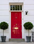 pic of front door  - Traditional English victorian front door - JPG