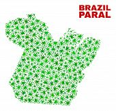 Vector Marijuana Paral State Map Mosaic. Template With Green Weed Leaves For Weed Legalize Campaign. poster