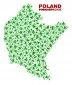 Vector Cannabis Podkarpackie Voivodeship Map Mosaic. Concept With Green Weed Leaves For Weed Legaliz poster