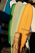 Set Of Different Color Surf Boards In A Stack By Ocean.bali.indonesia. Surf Boards On Sandy Beach Fo poster