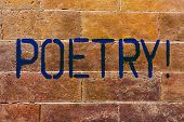 Conceptual Hand Writing Showing Poetry. Business Photo Showcasing Literary Work Expression Of Feelin poster