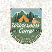 Wilderness Camp Patch. Be Wild And Free. Vector Illustration. Concept For Badge, Shirt Or Logo, Prin poster