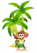 Illustration of a very happy monkey near the banana plant on a white background