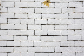 picture of arriere-plan  - A white brick wall background and texture - JPG