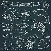 foto of devilfish  - Chalkboard collection of hand drawn sea animals - JPG